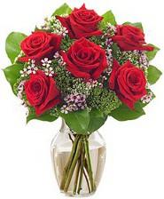 Kız arkadaşıma hediye 6 kırmızı gül  Hakkari çiçekçiler