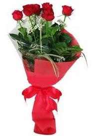 Çiçek yolla sitesinden 7 adet kırmızı gül  Hakkari çiçek siparişi sitesi