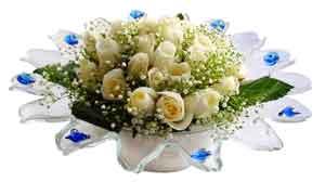 Hakkari hediye sevgilime hediye çiçek  11 adet Beyaz güller özel cam tanzim