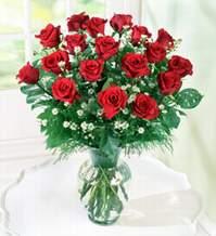 Hakkari çiçek siparişi sitesi  9 adet mika yada vazoda kirmizi güller