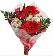 Mevsim çiçeklerinden görsel buket  Hakkari internetten çiçek satışı