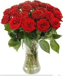 Hakkari çiçek servisi , çiçekçi adresleri  Vazoda 15 adet kırmızı gül tanzimi