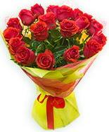 19 Adet kırmızı gül buketi  Hakkari internetten çiçek siparişi
