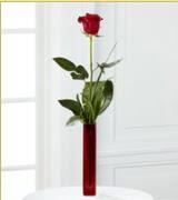 Vazo içerisinde 1 adet kırmızı gül  Hakkari çiçekçiler