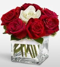 Tek aşkımsın çiçeği 8 kırmızı 1 beyaz gül  Hakkari cicekciler , cicek siparisi