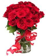 21 adet vazo içerisinde kırmızı gül  Hakkari çiçekçi telefonları