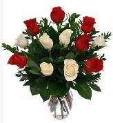 Vazo içerisinde 6 kırmızı 6 beyaz gül  Hakkari ucuz çiçek gönder