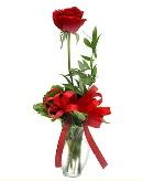 vazo içerisinde 1 adet kırmızı gül  Hakkari çiçek gönderme