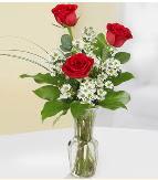 Vazo içerisinde 3 adet kırmızı gül  Hakkari çiçekçi telefonları
