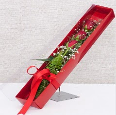 Kutu içerisinde 3 adet kırmızı gül  Hakkari çiçek siparişi vermek