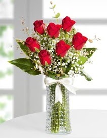 Cam vazoda 7 adet kırmızı gül  Hakkari çiçek satışı