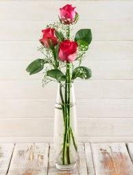 Cam içerisinde 3 kırmızı gül  Hakkari çiçekçi telefonları
