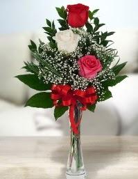 Camda 2 kırmızı 1 beyaz gül  Hakkari çiçek , çiçekçi , çiçekçilik