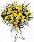 Hakkari güvenli kaliteli hızlı çiçek  Sari kazablanka Ferforje