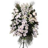 Hakkari online çiçek gönderme sipariş  Ferforje beyaz renkli kazablanka