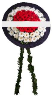 mozele çiçeği  Hakkari anneler günü çiçek yolla