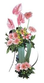 Hakkari kaliteli taze ve ucuz çiçekler  Pembe Antoryum Harikalar Rüyasi