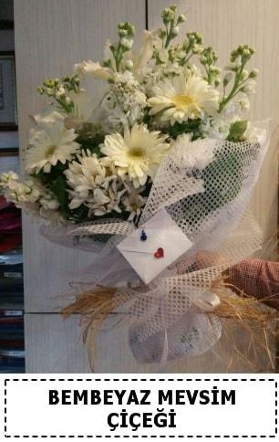 Bembeyaz görsel mevsim çiçek buketi  Hakkari çiçek gönderme sitemiz güvenlidir