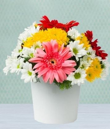 Seramik Vazoda Gelbera ve Papatya  Hakkari çiçek yolla
