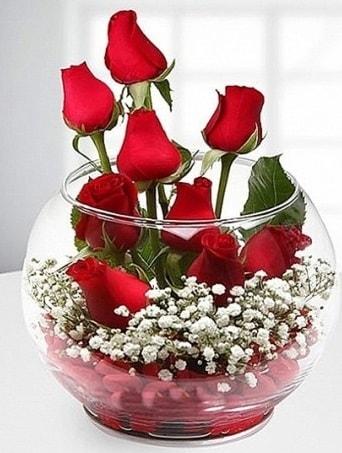 Kırmızı Mutluluk fanusta 9 kırmızı gül  Hakkari çiçekçi mağazası