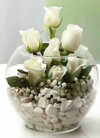 Beyaz Mutluluk 9 beyaz gül fanusta  Hakkari çiçekçi mağazası