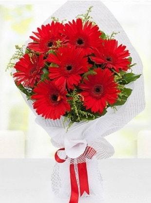 Kırmızı Gelbera Buketi  Hakkari çiçekçiler