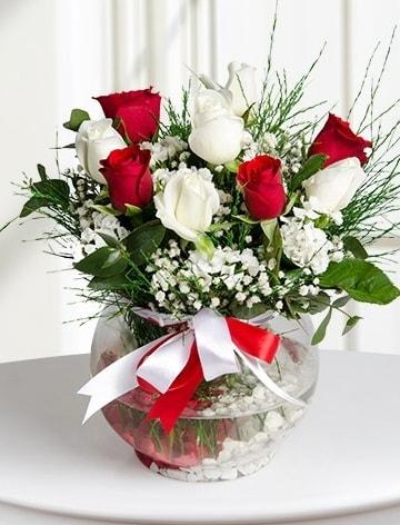 Aşk Küresi  5 beyaz 5 kırmızı gül fanusta  Hakkari çiçek siparişi sitesi