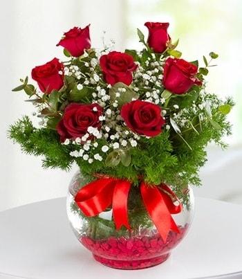 fanus Vazoda 7 Gül  Hakkari çiçek satışı