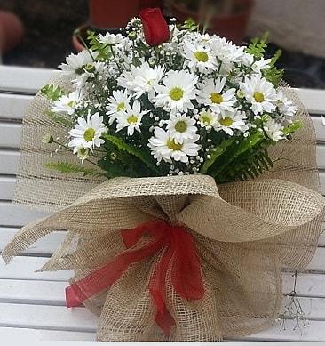 Papatya 1 adet kırmızı gül buketi  Hakkari internetten çiçek satışı
