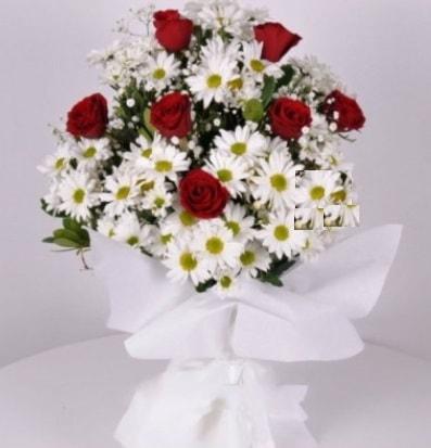 7 adet kırmızı gül ve papatyalar krizantem  Hakkari çiçek siparişi sitesi