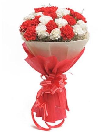 21 adet kırmızı beyaz karanfil buketi  Hakkari çiçekçi telefonları