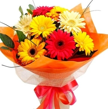 9 adet karışık gerbera buketi  Hakkari çiçek satışı