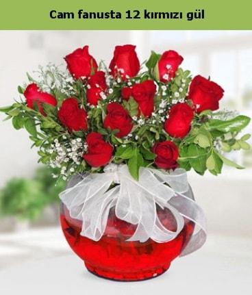 Cam içerisinde 12 adet kırmızı gül  Hakkari çiçek siparişi sitesi