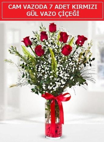 Cam vazoda 7 adet kırmızı gül çiçeği  Hakkari İnternetten çiçek siparişi