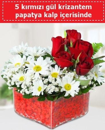 mika kalp içerisinde 5 kırmızı gül papatya  Hakkari çiçek yolla