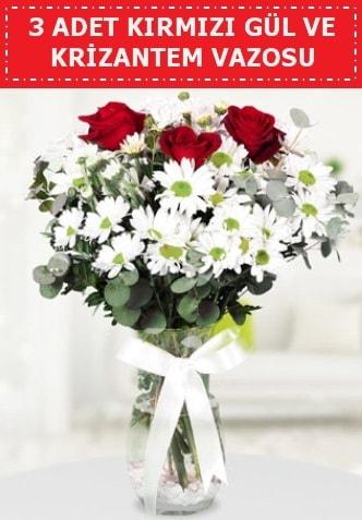 3 kırmızı gül ve camda krizantem çiçekleri  Hakkari çiçek yolla