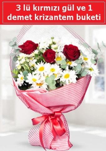 3 adet kırmızı gül ve krizantem buketi  Hakkari İnternetten çiçek siparişi
