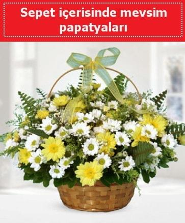 Sepet içerisinde mevsim papatyaları  Hakkari çiçek , çiçekçi , çiçekçilik