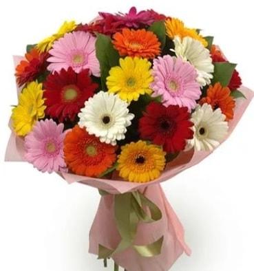 Karışık büyük boy gerbera çiçek buketi  Hakkari çiçekçi telefonları